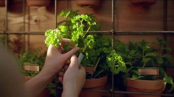 The Home Depot TV Spot, 'Grow a Garden: Bonnie Herbs & Vegetables' - Thumbnail 7
