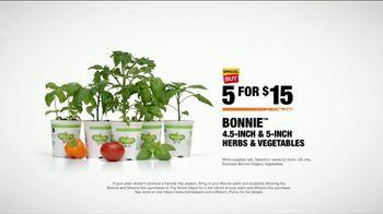 The Home Depot TV Spot, 'Grow a Garden: Bonnie Herbs & Vegetables' - Thumbnail 9