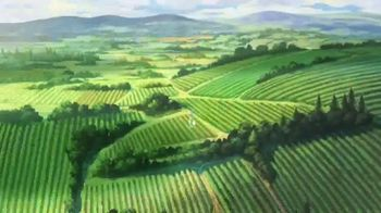 Travel Oregon TV Spot, 'Only Slightly Exaggerated: Grapes' - Thumbnail 5