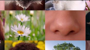 Flonase TV Spot, 'Alivio de alergias para todos' [Spanish] - Thumbnail 2