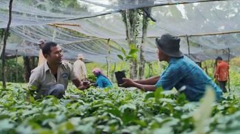 Green Mountain Sumatra Reserve Coffee TV Spot, 'The Story'