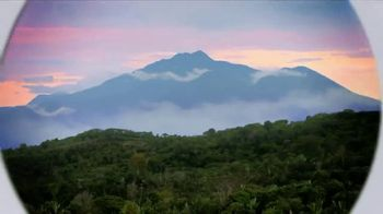 Green Mountain Sumatra Reserve Coffee TV Spot, 'The Story' - Thumbnail 9