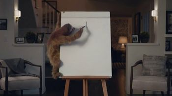 GEICO TV Spot, 'Game Night With a Sloth'