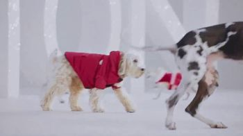 PetSmart TV Spot, 'Holiday Donations' - Thumbnail 6