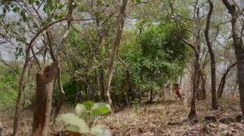 CuriosityStream TV Spot, 'Children of the Wild' - Thumbnail 2