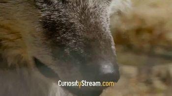 CuriosityStream TV Spot, 'Children of the Wild' - Thumbnail 5