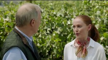 BDO Accountants and Consultants TV Spot, \'Vineyard\'