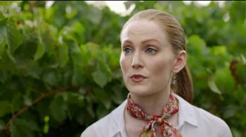 BDO Accountants and Consultants TV Spot, 'Vineyard' - Thumbnail 9