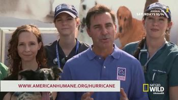 American Humane Association TV Spot, 'Nat Geo WILD: Harvey Victims' - Thumbnail 8