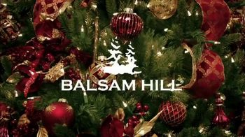 Balsam Hill TV Spot, 'Home for the Holidays' - Thumbnail 1