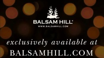 Balsam Hill TV Spot, 'Home for the Holidays' - Thumbnail 10
