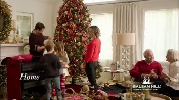 Balsam Hill TV Spot, 'Home for the Holidays' - Thumbnail 2