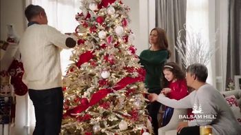 Balsam Hill TV Spot, 'Home for the Holidays'