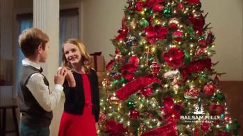 Balsam Hill TV Spot, 'Home for the Holidays' - Thumbnail 8