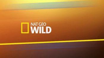 American Humane Association TV Spot, 'Nat Geo WILD: Hurricane Harvey' - Thumbnail 1