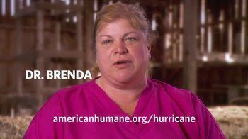 American Humane Association TV Spot, 'Nat Geo WILD: Hurricane Harvey'