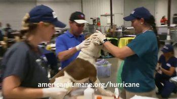American Humane Association TV Spot, 'Nat Geo WILD: Hurricane Harvey' - Thumbnail 8