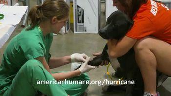 American Humane Association TV Spot, 'Nat Geo WILD: Hurricane Harvey' - Thumbnail 9