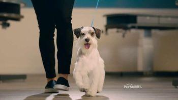 PetSmart Grooming TV Spot, 'Runway' Song by Meghan Trainor - Thumbnail 3