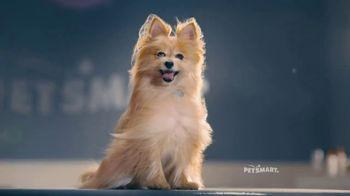 PetSmart Grooming TV Spot, 'Runway' Song by Meghan Trainor - Thumbnail 6