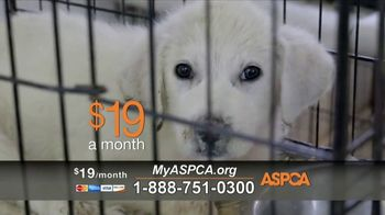 ASPCA TV Spot, \'Starved of Love and Affection\'