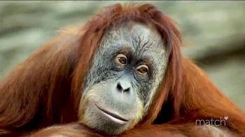Match.com TV Spot, 'Animal Instinct' - 25 commercial airings