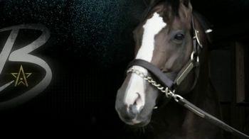 WinStar Farm TV Spot, 'Bodemeister: B Stands for Brilliant' - 3 commercial airings