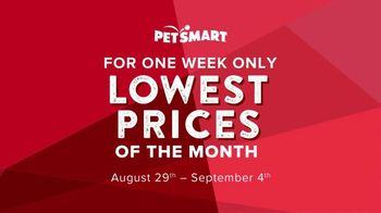Lowest Prices of the Month: September thumbnail