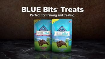 Blue Buffalo TV Spot, 'Food for Your Best Friend' - Thumbnail 7