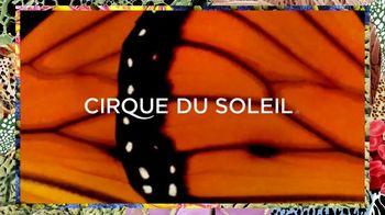Cirque du Soleil TV Spot, 'LUZIA' - Thumbnail 1