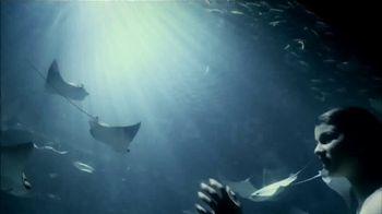 SeaWorld TV Spot, 'Lo real' [Spanish] - Thumbnail 10