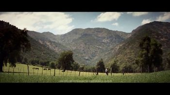 Coors Banquet TV Spot, 'Carry the West: Earned SL' [Spanish] - Thumbnail 4