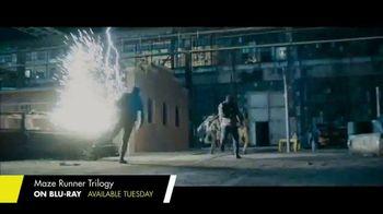 The Maze Runner Trilogy Home Entertainment TV Spot - Thumbnail 8