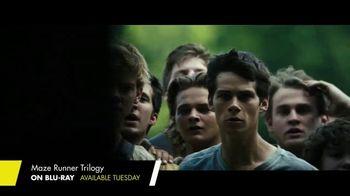 The Maze Runner Trilogy Home Entertainment TV Spot - Thumbnail 3