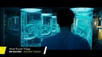 The Maze Runner Trilogy Home Entertainment TV Spot - Thumbnail 4