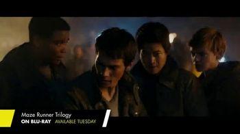 The Maze Runner Trilogy Home Entertainment TV Spot - Thumbnail 5