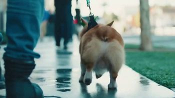 Rover.com TV Spot, 'Walk It Out' Song by Unk - Thumbnail 1