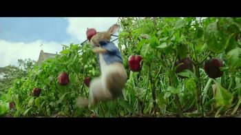 Peter Rabbit Home Entertainment TV Spot - Thumbnail 4