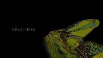 National Geographic TV Spot, 'Photo Ark' Song by X Ambassadors - Thumbnail 3