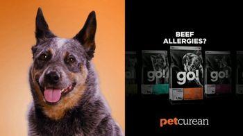 Petcurean TV Spot, 'Beef Allergies?' - Thumbnail 6