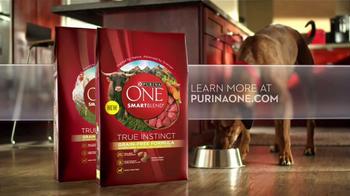 Purina One SmartBlend True Instinct TV Spot, 'Beef' - Thumbnail 8