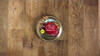 Purina One SmartBlend True Instinct TV Spot, 'Beef' - Thumbnail 3