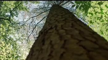 YellaWood TV Spot, 'Backyard Wonder' - Thumbnail 2