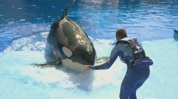 SeaWorld Fun Card TV Spot, 'All-Day Orca Play'