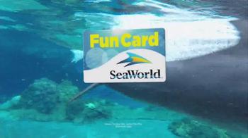SeaWorld Fun Card TV Spot, 'All-Day Orca Play' - Thumbnail 5