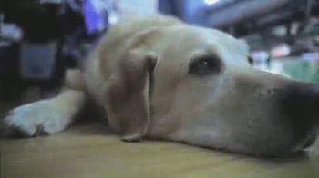 Hallmark Channel Pet Project TV Spot, 'Adopt' Feat. Candace Cameron Bure - Thumbnail 4