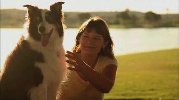 Hallmark Channel Pet Project TV Spot, 'Adopt' Feat. Candace Cameron Bure - Thumbnail 6