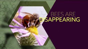 Honey Nut Cheerios TV Spot, 'TLC: Bring Back the Bees' - Thumbnail 2