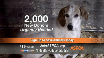 ASPCA TV Spot, 'Prevention of Cruelty to Animals Month' - Thumbnail 7