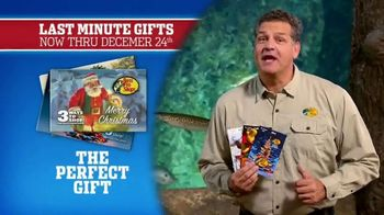 Bass Pro Shops Christmas Sale TV Spot, 'Last-Minute Gifts: Throws & Shirts' - Thumbnail 8